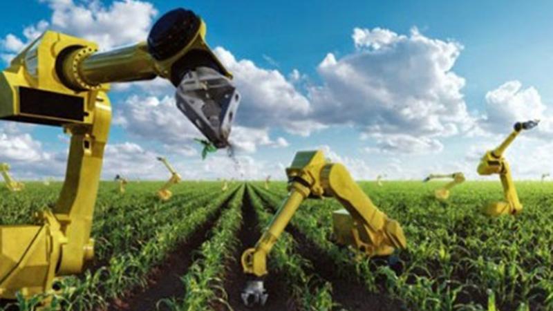 В Японии роботы заменят фермеров-1