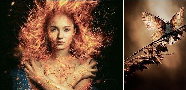 фото «Люди Икс: Темный Феникс». Системный разбор